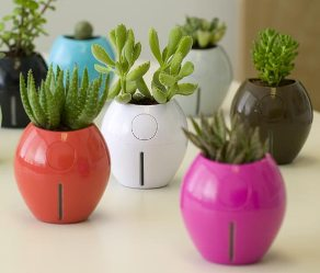 Grobal Planter поливает ваши растения сам