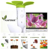 PlantSense - голос растений