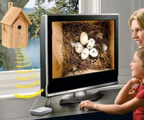 Nest Box with IR Camera