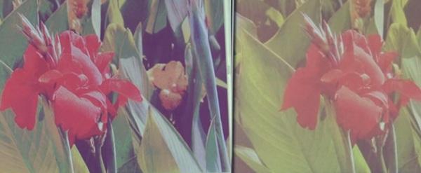 Цветной экран на основе электронной бумаги от Fujitsu