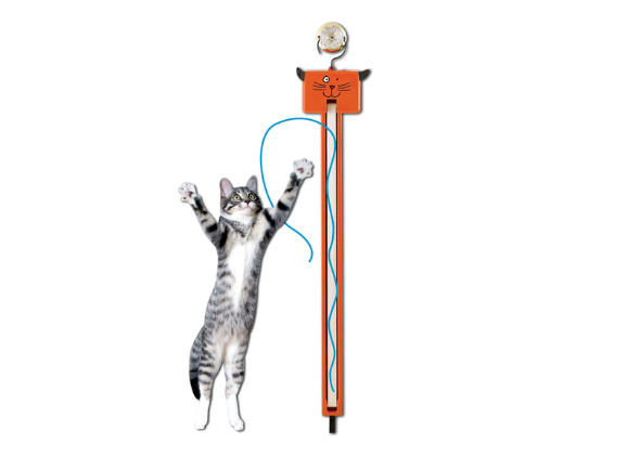 10 самых интересных гаджетов для кошек и собак