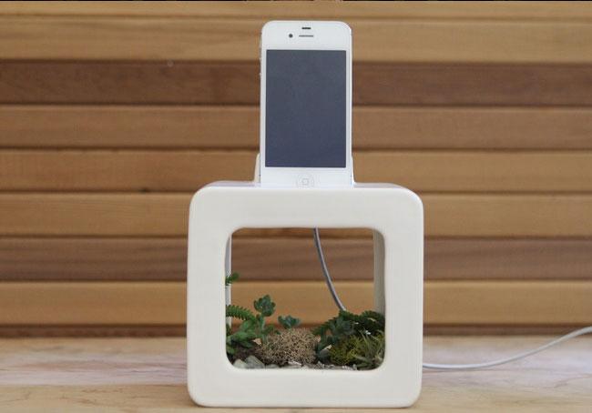 Bloombox – новинка для экологически-продвинутых яблокофилов