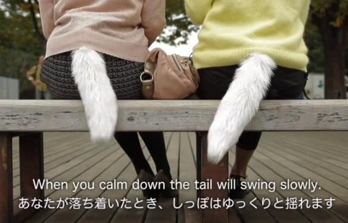 Fox-Tail