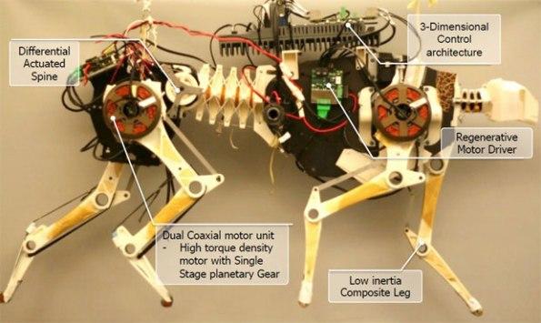 Ученые из MIT показали энергоэффективного робота-гепарда