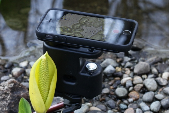 MicrobeScope – микроскоп для iPhone