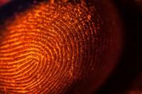 Qualcomm представила технологию ультразвукового сканирования отпечатков пальцев