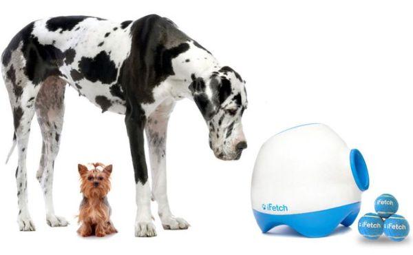 Игрушка iFetch Too для больших собак