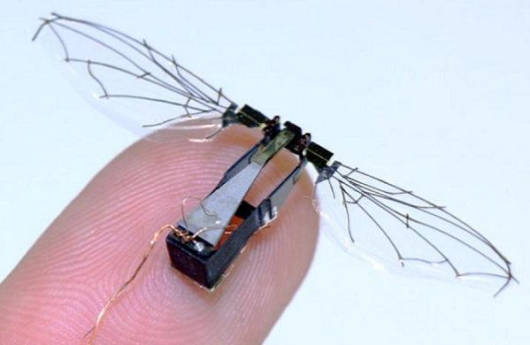 Ученые Гарварда создали робота-насекомого, способного летать и плавать