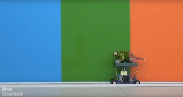 Робот-хамелеон, созданный на 3D-принтере