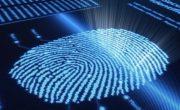 Специалисты уверены, что скоро будет выходить еще больше смартфонов со сканером отпечатков пальцев