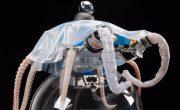 Создан первый в мире робот – осьминог