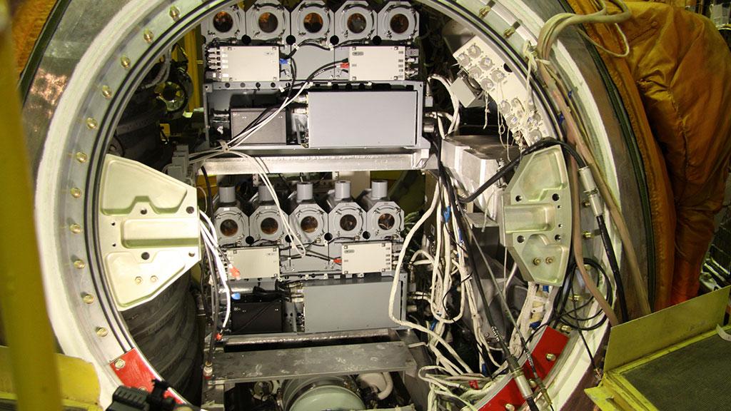 Российские ученые хотят отправить животных в космос на рекордную высоту