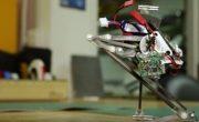 Робот-попрыгунчик Salto теперь умеет контролировать себя в воздухе