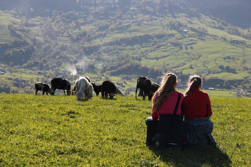 Отдых в Украине летом: экотуризм вместо путешествий по миру