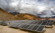 Бактерии, покрытые крошечными солнечными батареями, лучше растений справляются с фотосинтезом