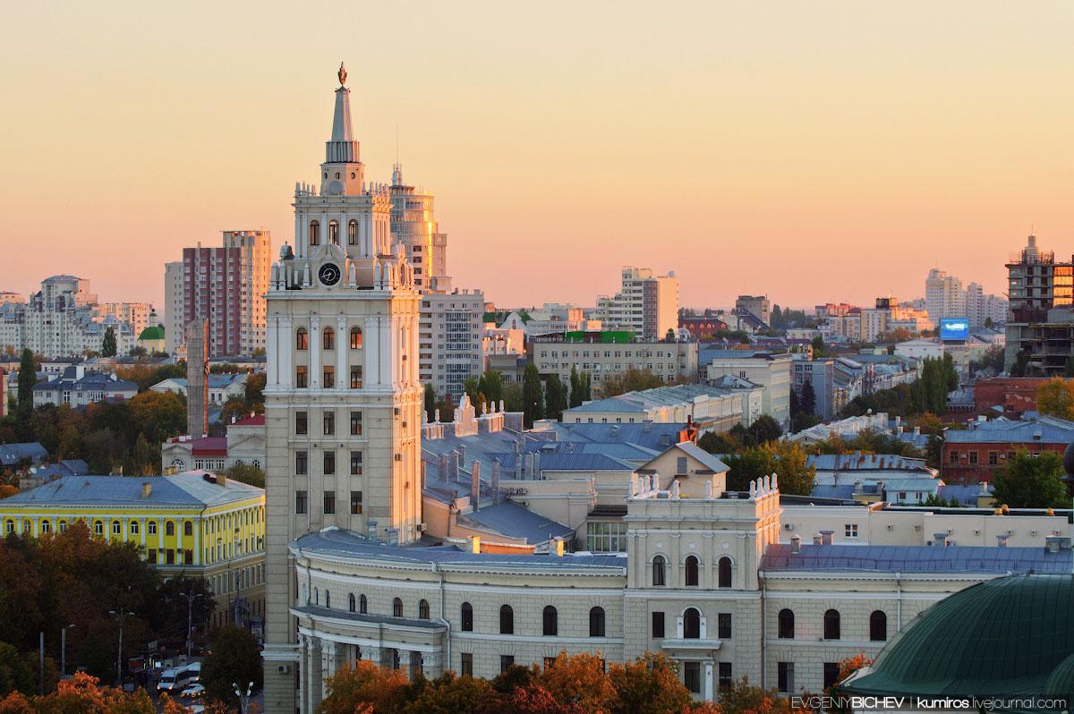 Телефонная база Воронежа – идеальное решение для поиска нужного номера