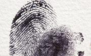 Китай обвиняется в «необоснованном» сборе образцов ДНК