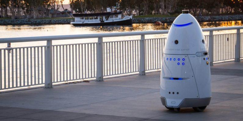 Любители животных призвали робота для защиты от бомжей