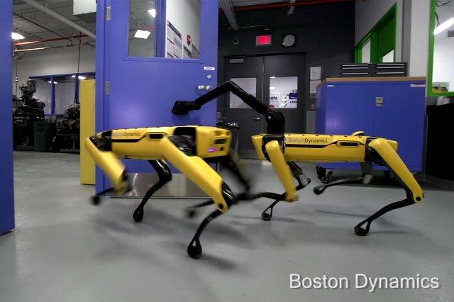 Роботы Boston Dynamics - самые вежливые «домашние животные»
