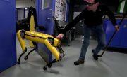 Роботы Boston Dynamics могут противостоять людям