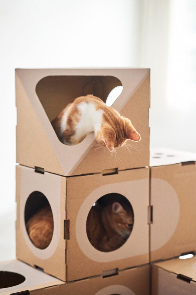 Вещь дня: домик для котов A Cat Thing