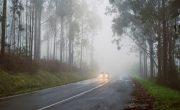 Автономные автомобили могут скоро лучше ориентироваться в тумане