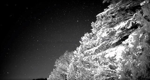Датчик Canon может снимать замедленную съемку в темноте