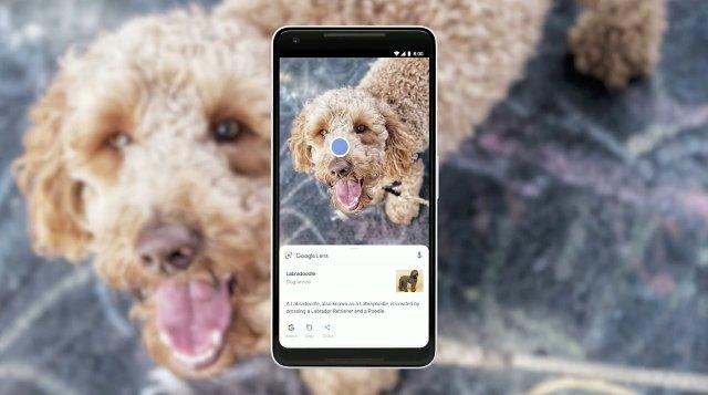 Google Lens будет доступен в приложениях для камеры