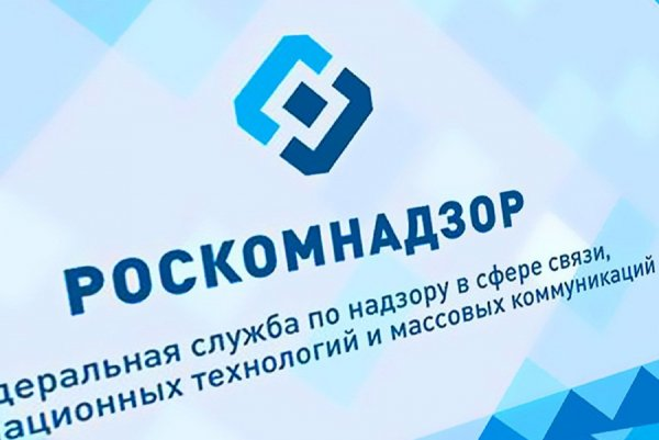 Жертвой блокировок Роскомнадзора стал сайт «Диссернет»