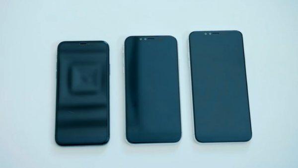 Самый большой и самый дешевый  iPhone показали на видео