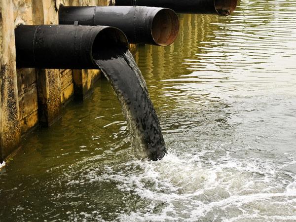 Как бороться с загрязнением окружающей среды