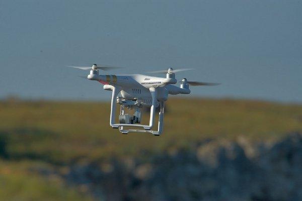 «Вдохновленный осами»: Мини-дрон поднимает вес в 40 раз больше собственной массы
