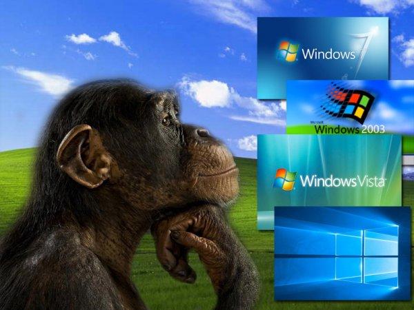 Капкан от Microsoft: Все версии Windows до 2012 года может атаковать новый вирус