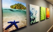 Коллекции картин талантливых дизайнеров
